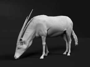 Gemsbok 1:45 Drinking Female in Smooth Fine Detail Plastic