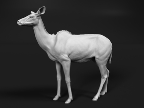 Greater Kudu 1:12 Chewing Female in White Natural Versatile Plastic