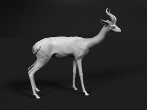 Gerenuk 1:12 Standing Male in White Natural Versatile Plastic