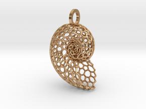 Voronoi Shell Pendant in Polished Bronze