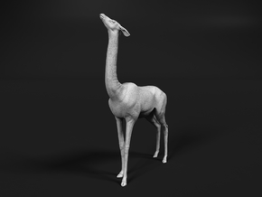 Gerenuk 1:30 Female feeding on four legs in Smooth Fine Detail Plastic