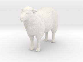 S Scale Sheep in White Natural Versatile Plastic