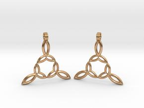 Earrings in Polished Bronze