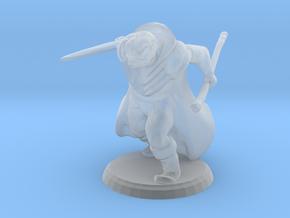 Warrior Wizard in Smooth Fine Detail Plastic
