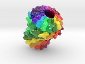 General Secretion Pathway Protein GspD (Large) in Glossy Full Color Sandstone