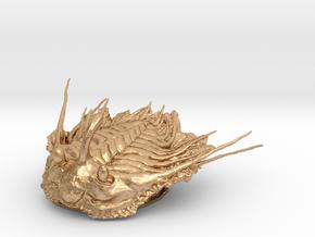 Trilobite - Kettneraspis prescheri in Natural Bronze