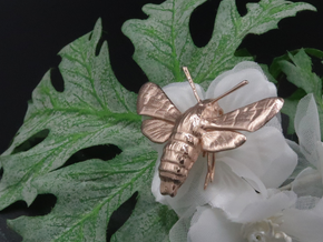 Hummingbird Hawk-Moth Pendant (hollow version) in 14k Rose Gold Plated Brass