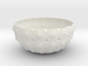 Bowl in White Natural Versatile Plastic