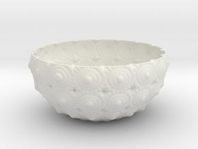 Bowl in White Natural Versatile Plastic