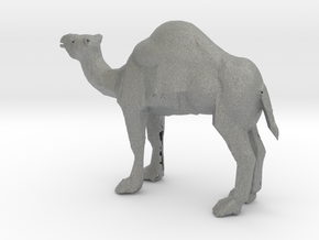 HO Scale Camel in Gray PA12