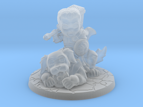 Discord Paladin and Dog in Smooth Fine Detail Plastic