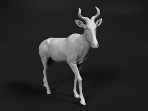 Coke's Hartebeest 1:87 Walking Male in Smooth Fine Detail Plastic