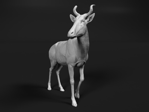 Bubal Hartebeest 1:20 Walking Male in White Natural Versatile Plastic