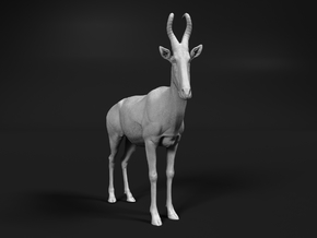 Lelwel Hartebeest 1:6 Standing Male in White Natural Versatile Plastic