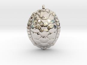 Turtle in Rhodium Plated Brass