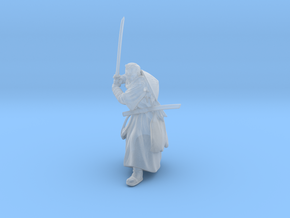Hermit Samurai in Smooth Fine Detail Plastic