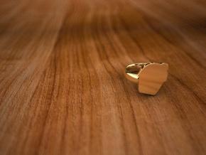 Pikabu ring 14k gold 6size in 14K Yellow Gold