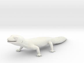 Leopard Gecko - Life Sized Model  in White Natural Versatile Plastic