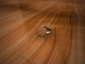 Pikabu Ring Premium silver 6size in Fine Detail Polished Silver