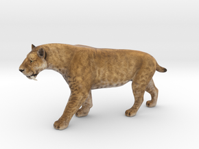 Smilodon Saber-Toothed Cat 1/12 Scale Model  in Natural Full Color Sandstone