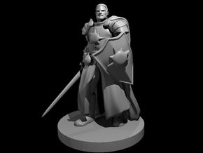 Human Male Light Cleric / Paladin - Sword & Shield in Smooth Fine Detail Plastic