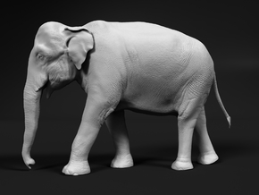 Indian Elephant 1:32 Walking Female in White Natural Versatile Plastic