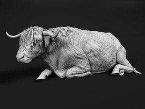 Highland Cattle 1:64 Lying Female in Smooth Fine Detail Plastic