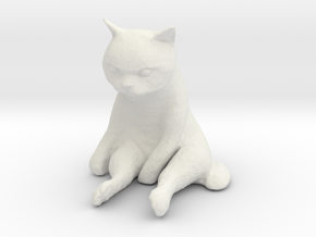 1/12 Grumpy Cute Cat Sitting in White Natural Versatile Plastic