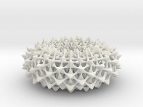 Hexagon Weave on Torus in White Natural Versatile Plastic