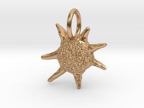 Baculogypsina Foraminifera Pendant - Marine Biolog in Polished Bronze