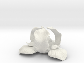 Iris Candle Holder in White Strong & Flexible
