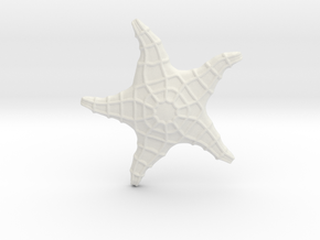 Starfish in White Natural Versatile Plastic