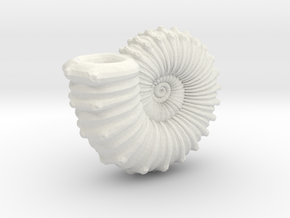 Ammonite in White Strong & Flexible
