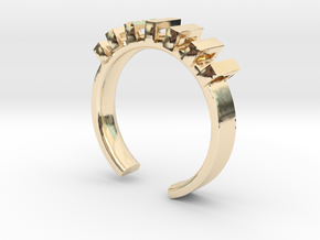 Lord Shackle Ring - Sz. 9 in 14K Yellow Gold