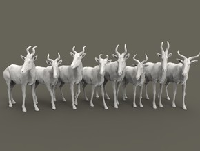 Hartebeest Set 1:160 eight different subspecies in Smooth Fine Detail Plastic