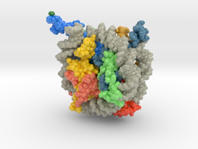 Nucleosome 1kx5 Methyl Groups in Glossy Full Color Sandstone: Extra Small