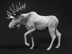 Moose 1:6 Walking Male in White Natural Versatile Plastic