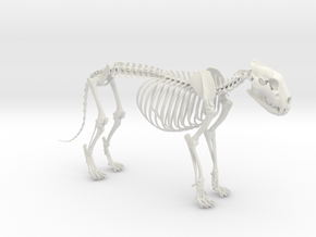 Lion Skeleton Sculpture in White Natural Versatile Plastic