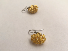 Embryonic kidney drop earring - horizontal version in Polished Gold Steel: Medium
