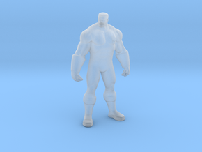 Printle V Homme 2109 - 1/48 - wob in Smooth Fine Detail Plastic