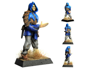 Rogue in Smooth Fine Detail Plastic