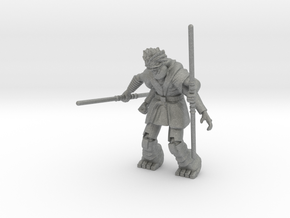 Commander Rellish in Gray PA12