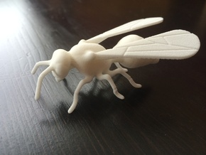 Detailed Wasp 42mm in White Natural Versatile Plastic