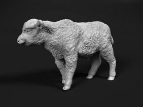 Highland Cattle 1:45 Walking Calf in Smooth Fine Detail Plastic