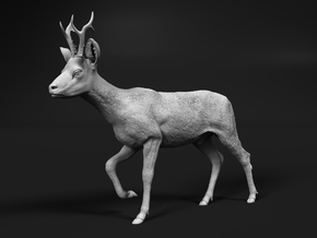 Roe Deer 1:20 Walking Male in White Natural Versatile Plastic