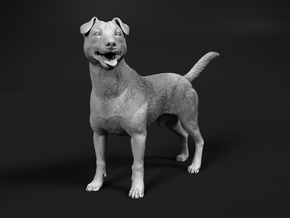 Jack Russell Terrier 1:20 Standing Male in White Natural Versatile Plastic