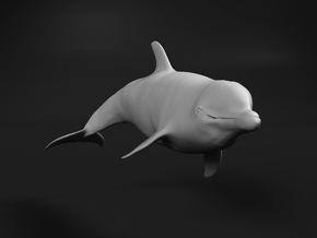 Bottlenose Dolphin 1:220 Swimming 1 in Smooth Fine Detail Plastic