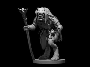 Gnoll Shaman 2 in Smooth Fine Detail Plastic