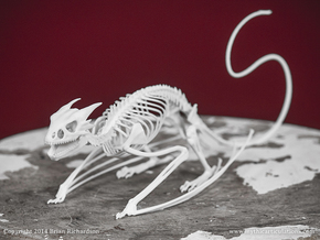 Horned Wyvern Skeleton in White Natural Versatile Plastic
