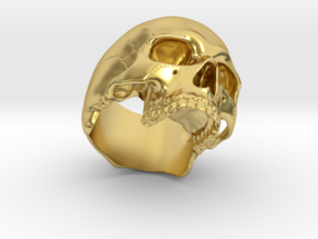 Skull Ring _ R01 in Polished Brass: 8 / 56.75